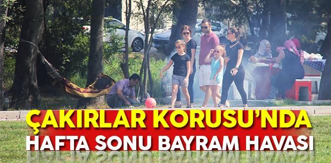 Çakırlar Korusu'nda Hafta sonu bayram havası