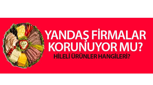 "CHP'li Akçagöz, ""Yandaş Firmalar Korunuyor Mu?"