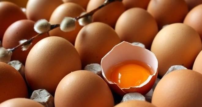 Yumurta kabuğunun faydaları neler? Yumurta kabuğunu kaynatıp fırınlarsanız...