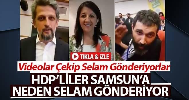 HDP'liler Neden Video Çekip Selam Gönderiyorlar