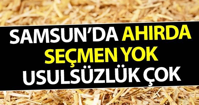 Samsun'da Ahırda Seçmen Yok Usulsüzlük Çok