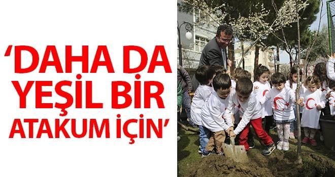 Daha da yeşil bir Atakum için… Atakum'da her eve bir ağaç